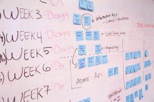 translation-management-development-schedule