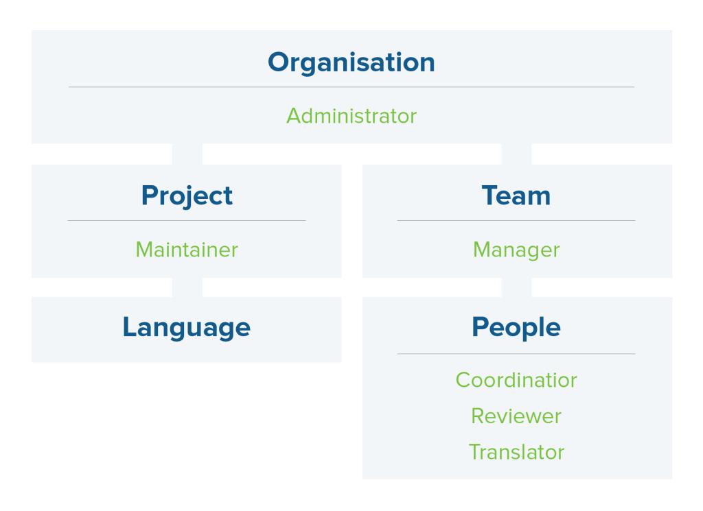 Transifex teams schema